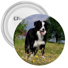 Border Collie Full 3 3  Buttons