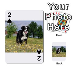 Border Collie Full 3 Playing Cards 54 Designs