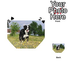 Border Collie Full 3 Playing Cards 54 (Heart)