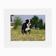 Border Collie Full 3 Small Glasses Cloth (2-Side)