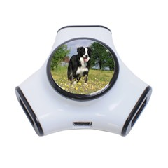 Border Collie Full 3 3-Port USB Hub