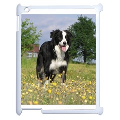 Border Collie Full 3 Apple iPad 2 Case (White)