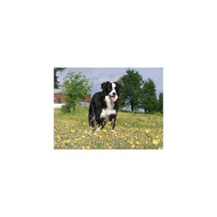 Border Collie Full 3 YOU ARE INVITED 3D Greeting Card (8x4)