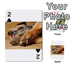 Border Terrier Sleeping Playing Cards 54 Designs