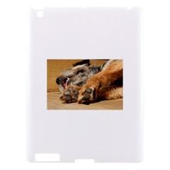 Border Terrier Sleeping Apple iPad 3/4 Hardshell Case