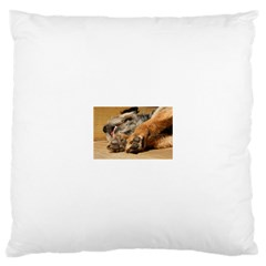 Border Terrier Sleeping Large Cushion Cases (Two Sides)