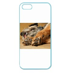 Border Terrier Sleeping Apple Seamless iPhone 5 Case (Color)