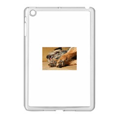 Border Terrier Sleeping Apple iPad Mini Case (White)