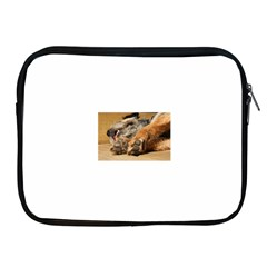Border Terrier Sleeping Apple iPad 2/3/4 Zipper Cases