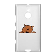 Peeping Pomeranian Nokia Lumia 1520