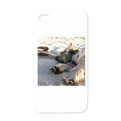 Cairn Terrier Sleeping On Beach Apple iPhone 4 Case (White)