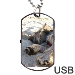Cairn Terrier Sleeping On Beach Dog Tag USB Flash (One Side)