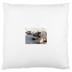 Cairn Terrier Sleeping On Beach Large Cushion Cases (Two Sides)
