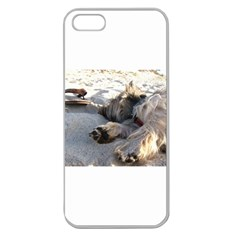 Cairn Terrier Sleeping On Beach Apple Seamless iPhone 5 Case (Clear)