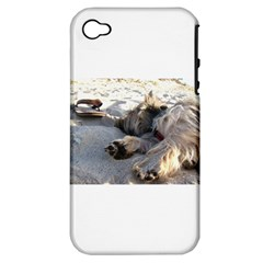 Cairn Terrier Sleeping On Beach Apple iPhone 4/4S Hardshell Case (PC+Silicone)