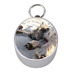 Cairn Terrier Sleeping On Beach Mini Silver Compasses