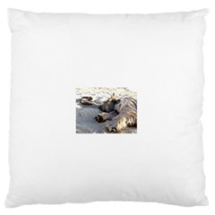 Cairn Terrier Sleeping On Beach Standard Flano Cushion Cases (Two Sides)