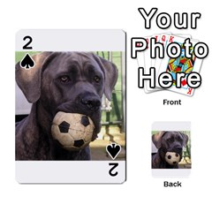Cane Corso Playing Cards 54 Designs