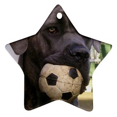Cane Corso Star Ornament (Two Sides)