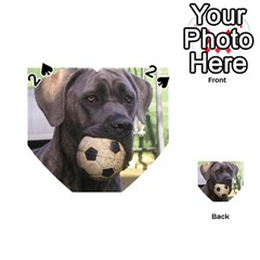 Cane Corso Playing Cards 54 (heart)