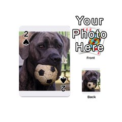 Cane Corso Playing Cards 54 (Mini)