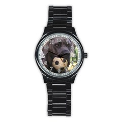 Cane Corso Stainless Steel Round Watches