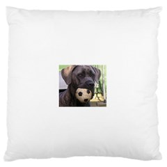 Cane Corso Standard Flano Cushion Cases (Two Sides)