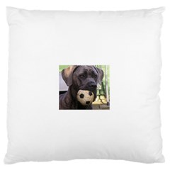 Cane Corso Large Flano Cushion Cases (Two Sides)