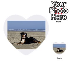 Bernese Mountain Dog Laying On Beach Multi-purpose Cards (Heart)