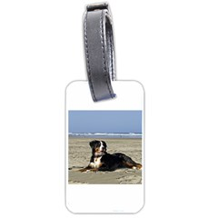 Bernese Mountain Dog Laying On Beach Luggage Tags (Two Sides)