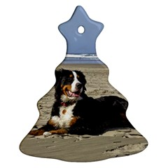 Bernese Mountain Dog Laying On Beach Christmas Tree Ornament (2 Sides)