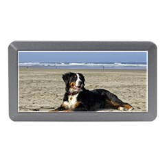 Bernese Mountain Dog Laying On Beach Memory Card Reader (Mini)
