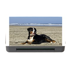 Bernese Mountain Dog Laying On Beach Memory Card Reader with CF
