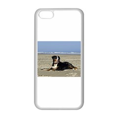 Bernese Mountain Dog Laying On Beach Apple iPhone 5C Seamless Case (White)