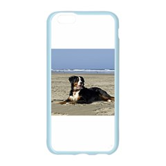 Bernese Mountain Dog Laying On Beach Apple Seamless iPhone 6/6S Case (Color)