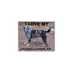 Catahoula Love With Picture YOU ARE INVITED 3D Greeting Card (8x4)