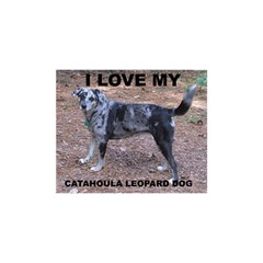 Catahoula Love With Picture Birthday Cake 3d Greeting Card (7x5)