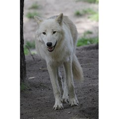 White Wolf 5 5  X 8 5  Notebooks