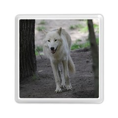 White Wolf Memory Card Reader (square)