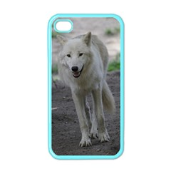 White Wolf Apple iPhone 4 Case (Color)
