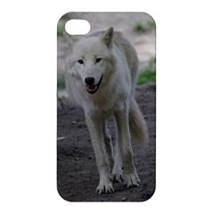 White Wolf Apple iPhone 4/4S Hardshell Case