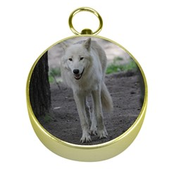 White Wolf Gold Compasses