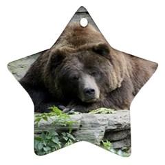 Tired Bear Ornament (Star)