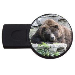 Tired Bear USB Flash Drive Round (2 GB)
