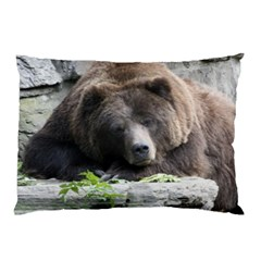Tired Bear Pillow Cases