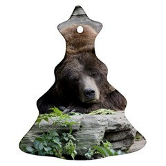 Tired Bear Christmas Tree Ornament (2 Sides)
