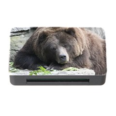Tired Bear Memory Card Reader With Cf