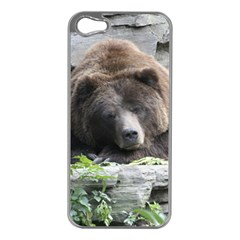 Tired Bear Apple iPhone 5 Case (Silver)