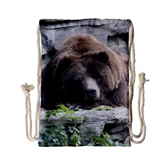 Tired Bear Drawstring Bag (small)