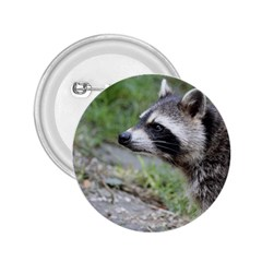 Racoon 1115 2.25  Buttons